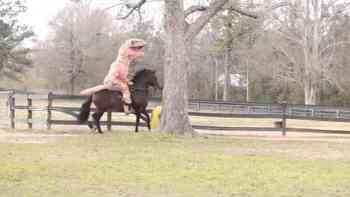Das irrste Video des Tages: T-Rex reitet auf Fussball spielendem Pferd